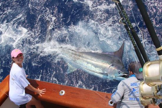 Capt. Teddy Hoogs Big Game Sportfishing : photo0.jpg