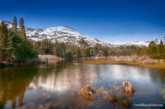 South Lake Tahoe, CA: Glen Alpine Lake by Sharon O'Brien-Lykins