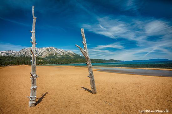 South Lake Tahoe, CA: The beach by Tallac Point by Sharon O'Brien-Lykins