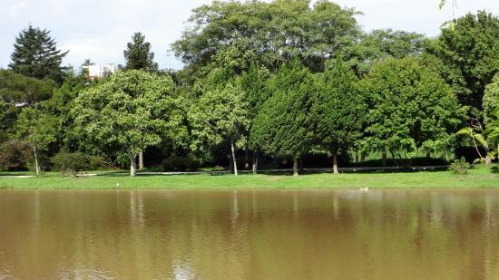 Πολιτεία Παρανά: Dias de verão...