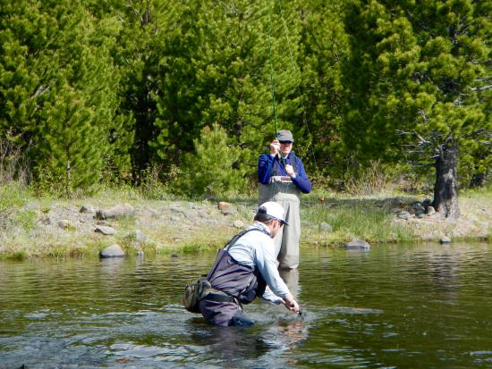 Guide at work picture of matt heron fly fishing for Tahoe fly fishing