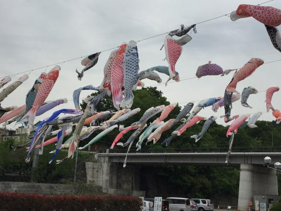 Yokoze-machi, Giappone: photo2.jpg