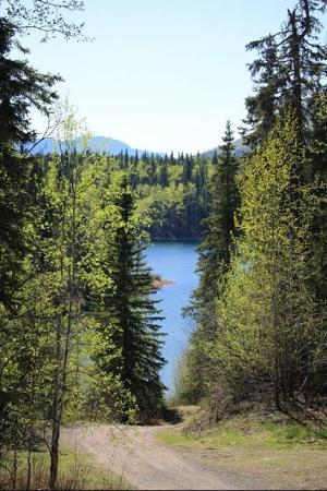 Dease Lake, Kanada: View of Allan Lake a block away