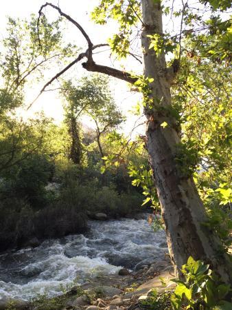 Three Rivers, CA: photo0.jpg
