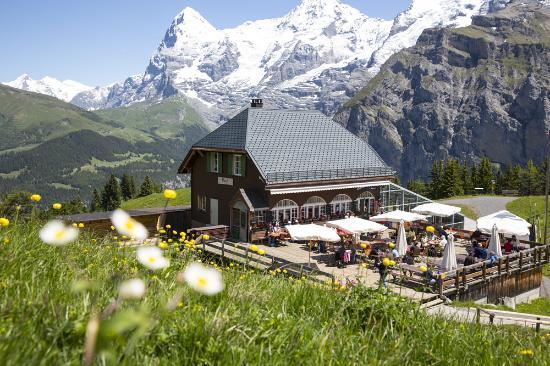 Schilthornbahn AG: Panorama Restaurant Allmendhubel