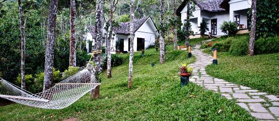 Niraamaya Retreats Cardamom Club - Thekkady