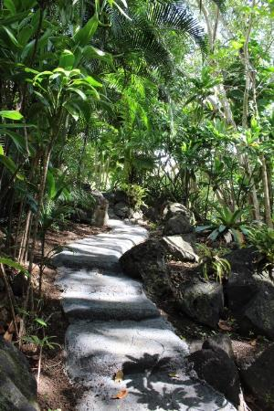 Kilauea, HI: Walkway thru the jungle to the beach
