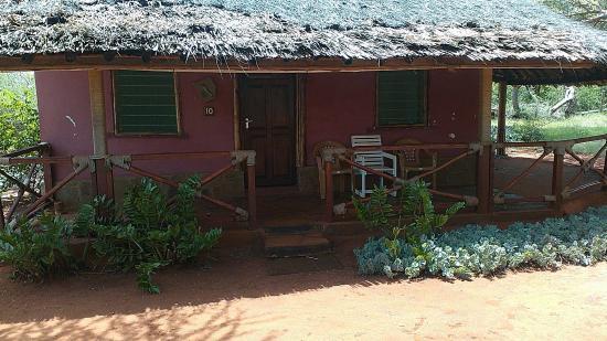 Pool - Picture of Sagala Lodge, Voi - Tripadvisor