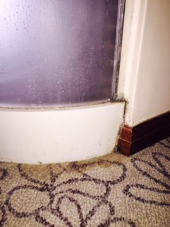 The Capital Moloko: Mold and residue seen as you walk into rooms
