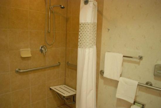 Hampton Inn Dulles-Cascades: Accessible Roll-in Shower