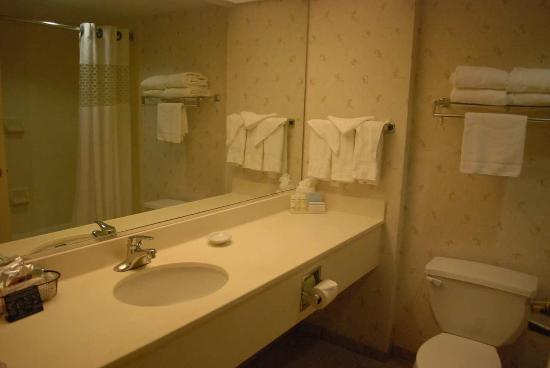 Hampton Inn Dulles-Cascades: Standard Bathroom