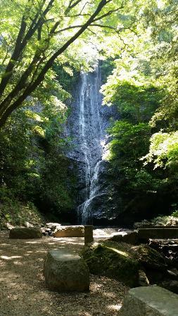Koto Fall: 20160515_110130_large.jpg
