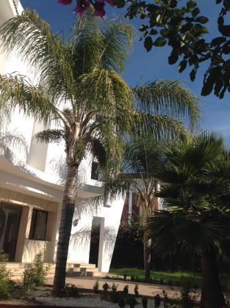 Hotel Plaisance: jardin