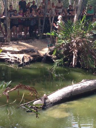 Palm Cove, Australia: photo1.jpg