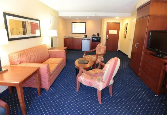Blacksburg, VA: King Suite Living Area