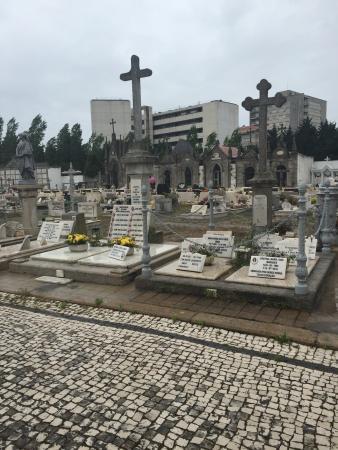 Cemitério de Lordelo do Ouro