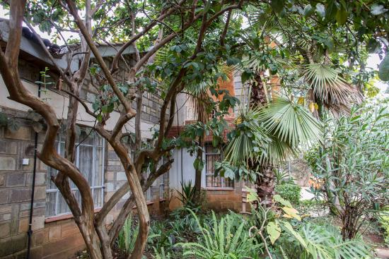 PINE TREE GARDENS   ELDORET   Prices U0026 Guest House Reviews (Kenya)    TripAdvisor
