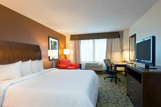 Hilton Garden Inn Orlando at SeaWorld - King Guest Room