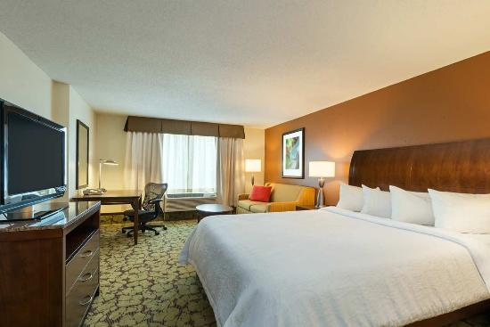 Hilton Garden Inn Orlando at SeaWorld - King Suite