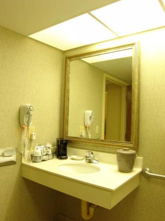 Hampton Inn Mobile I-10/Bellingrath Gardens: Accessible Vanity
