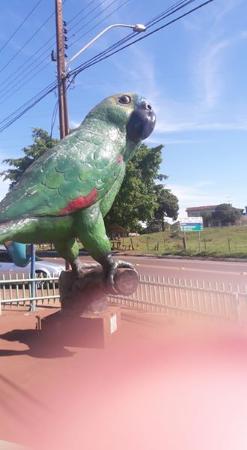 Guaira, PR: marca registrada...............papagaio