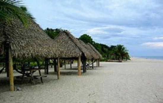 Best Restaurants In Coronado Panama