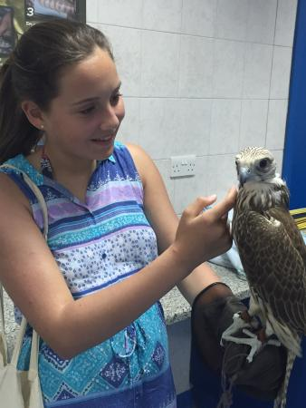 Abu Dhabi Falcon Hospital: photo0.jpg