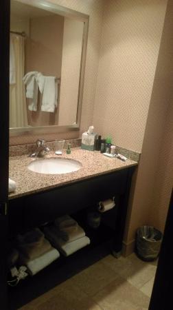 Boulevard Inn: Small bathroom, nice towels, good condition