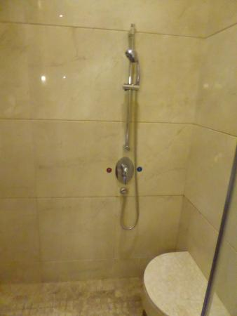 Dragon Lake Princess Hotel: Separate shower
