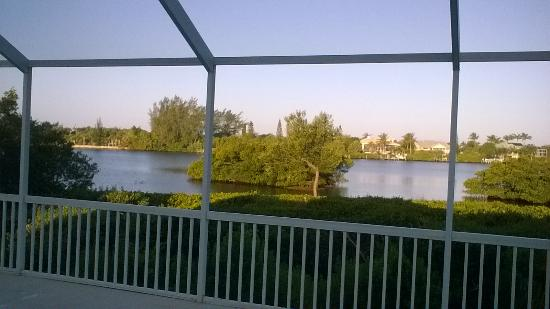 South Venice, ฟลอริด้า: the view from the pool area