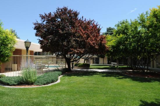 Clarion Inn Grand Junction: Courtyard