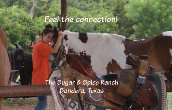 The Sugar & Spice Ranch: Get connected!
