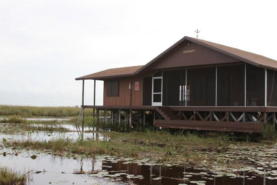 Privately owned fishing cabin on stilts picture of fort for Log cabin homes on stilts