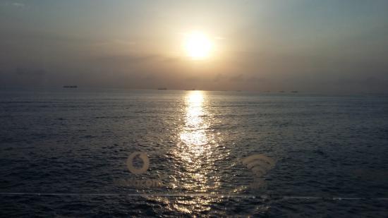 Sea Cliff Hotel Photo