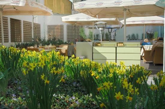 Hotel Yasmin : Summer Garden