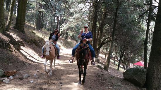 Parque recreativo La Marquesa: Paseo a caballo por la marqueza