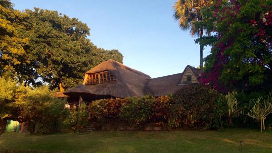 Ngala Beach Lodge: photo5.jpg