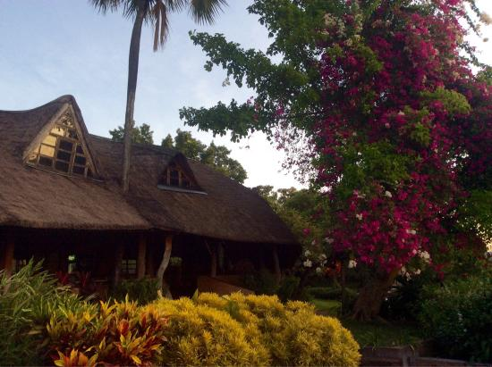 Ngala Beach Lodge: photo6.jpg