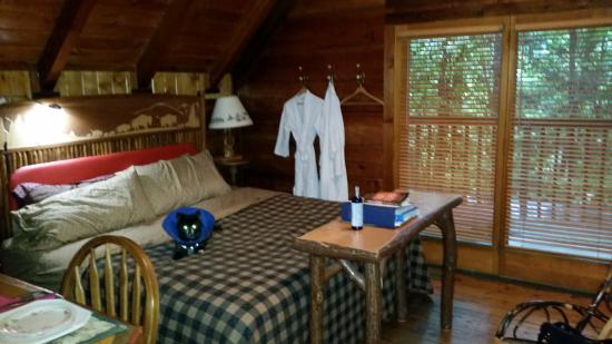 One Room Cabin Fabulous One Room Cabin Interior Design Imag With