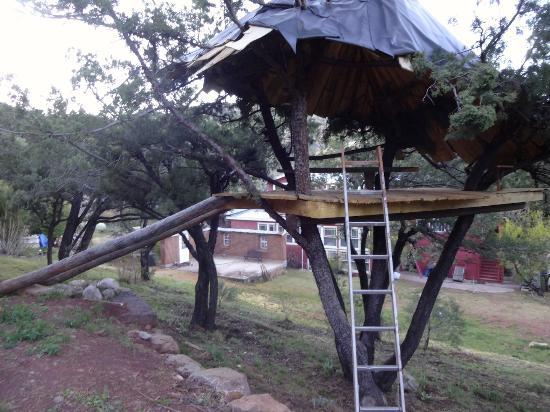 The Black Range Lodge: The treehouse.