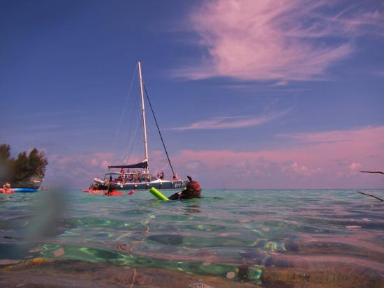 Hamilton, Bermudy: Clear water, snorkelers and Rising Son II