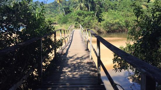 Mangues Beach Photo