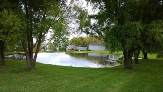 Romulus, NY: Pond Site Viewing Cayuga