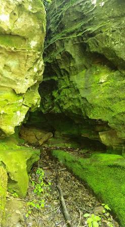 Makanda, IL: Just a cave