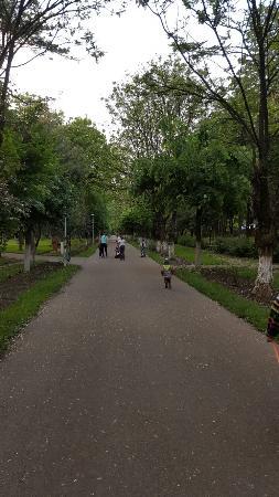 Bacau, Roumanie : Park