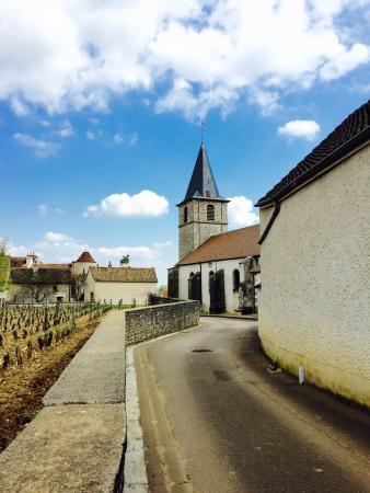 Flagey-Echezeaux, Francia: As dicas dos anfitriões, tanto de lugares, cidades, ou de reservas em restaurantes,  fizeram a v