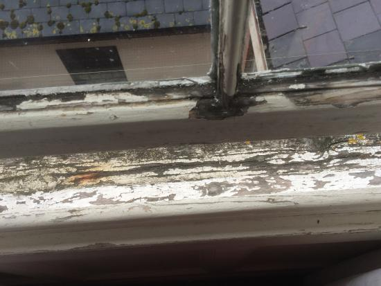 Russell Hotel: Inside window sill. Revolting
