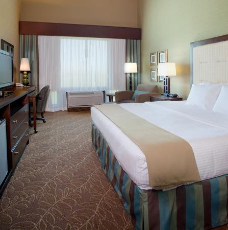 Holiday Inn Express Hotel & Suites Logan: King Bed Guest Room