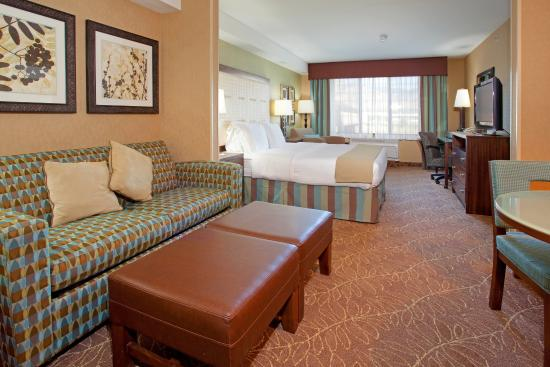 Holiday Inn Express Hotel & Suites Logan: Suite