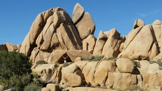 写真Jumbo Rocks Campground枚